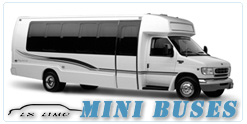 Mini Bus rental in Virginia Beach VA