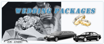 Virginia Beach Wedding Limos